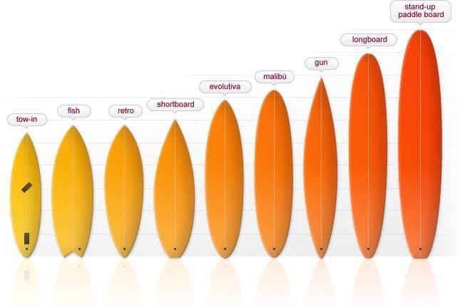 Tablas de surf ecured - Fotos de tabla de surf ...