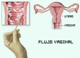Semana/vagina: las conversaciones de Semana/vagina