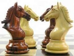 jugadas ajedrez caballo: