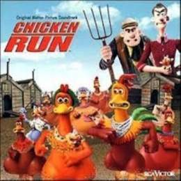 Chicken run 1.jpg