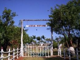 bosque martiano del ariguanabo