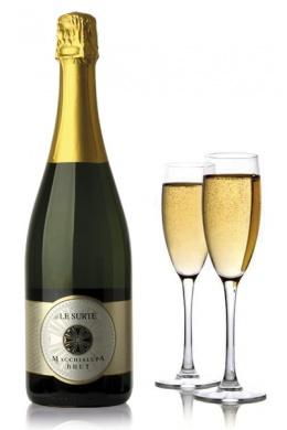 Una copa de champan para dunia montenegro - 1 part 1
