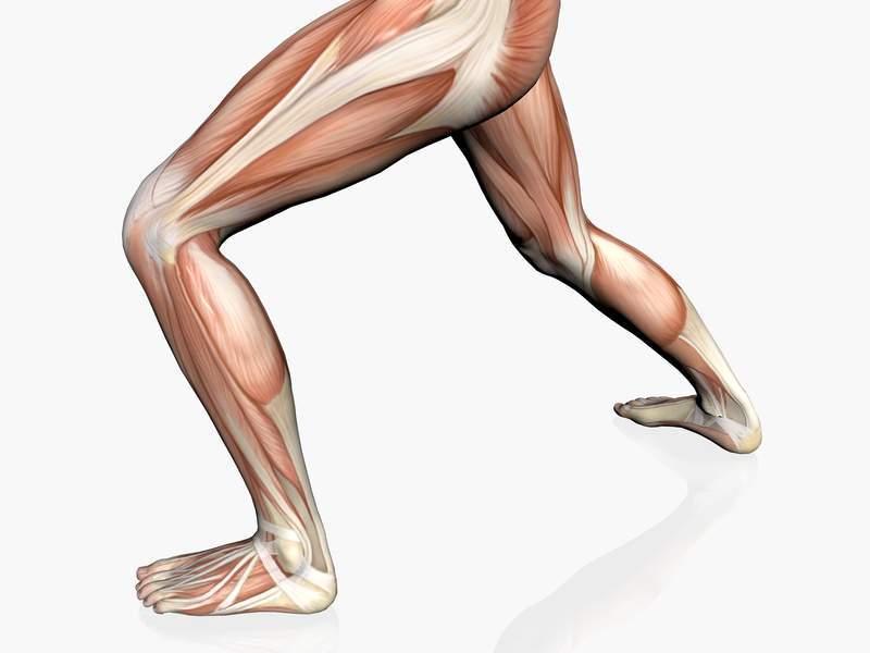 Deportivas imagenes por lesiones musculares diagnostico