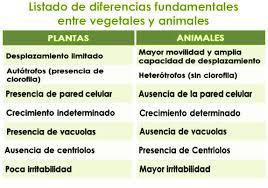 Los Animales En Comparación Con Las Plantas Ecured