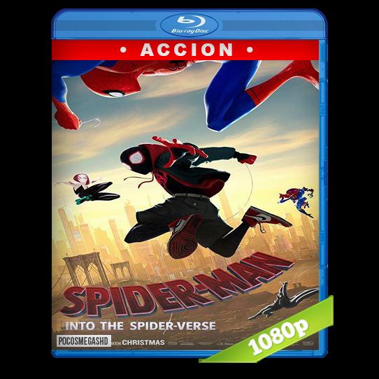Spider Man Un Nuevo Universo Ecured