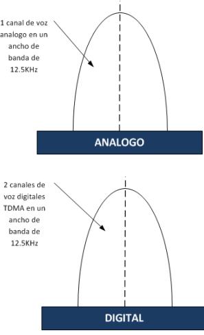 Analogadiditsistdmr.png