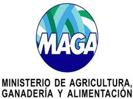 Image result for El Ministerio de Agricultura, Ganadería y Alimentación