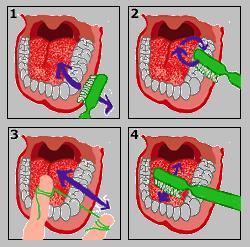 Higiene bucal - EcuRed ab813f61a8fe