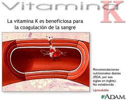 K3? de la ¿Cuáles beneficios son los vitamina