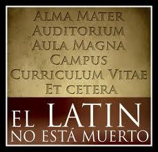 Resultado de imagen de imagen latin