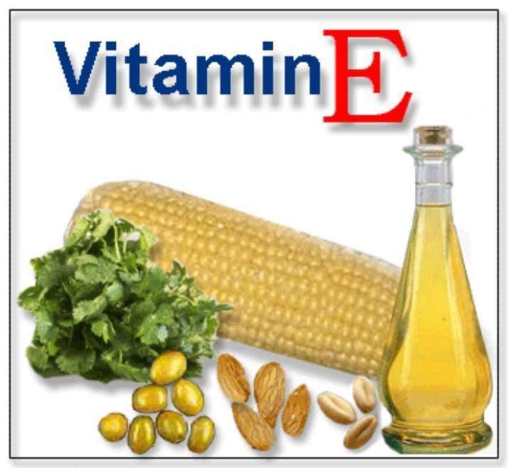 funcion de la vitamina a en el recien nacido