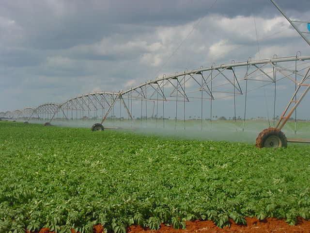 Camagüey presta especial atención a la producción de alimentos y el ahorro energético