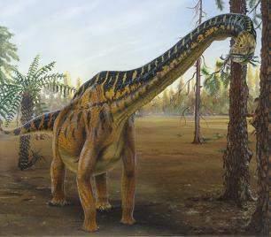 Dinosaurio Herbivoro Ecured Son todos los dinosaurios pertenecientes al orden ornitischia, o bien saurischia si son artrópodos u otros que se alimenten exclusivamente de plantas.además las hojas y plantas que solían comer los. dinosaurio herbivoro ecured