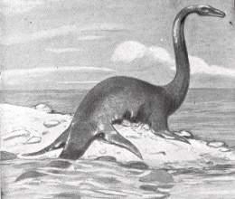 Resultado de imagen para Plesiosaurio