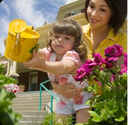 Cuidado de las plantas ecured for Importancia de las plantas ornamentales