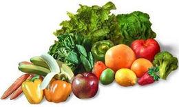 que es alimentacion sana wikipedia