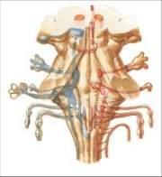 El dibujo sensitivo y expresivo de la figura humana cfnm - 2 part 10