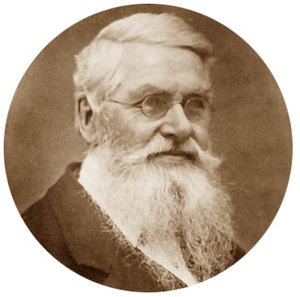 Alfred Russell Wallace.PNG