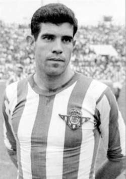 Image result for Luis Aragonés