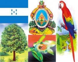 Resultado de imagen para simbolos patrios honduras